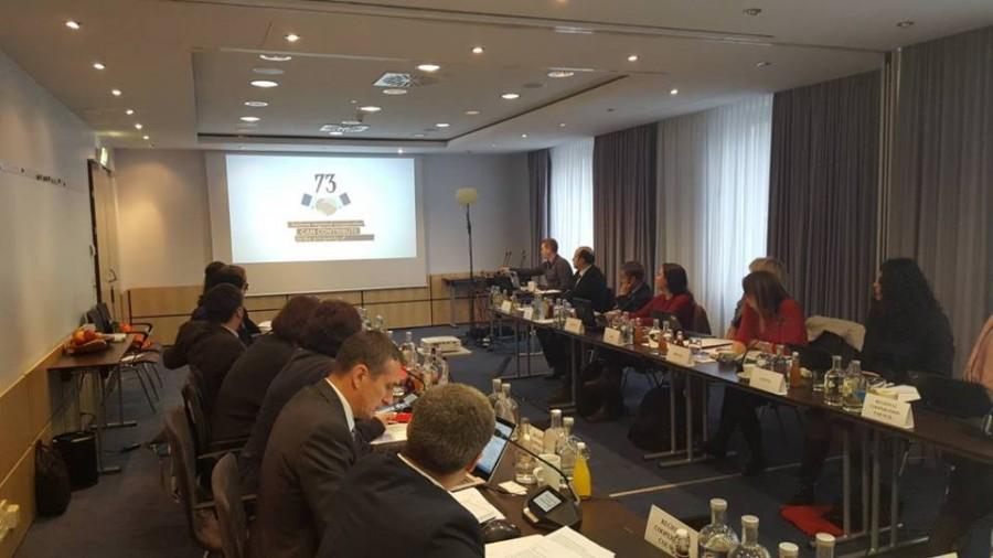 RCC meeting Vienna.jpg