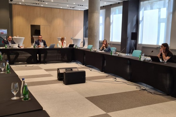 Workshop on drafted Analysis of Policy Co-ordination in Serbia