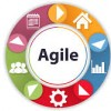 Training on agile governance and leadership