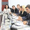 Peer-Mission on Public Participation, Pristina, Kosovo*